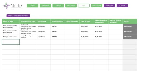 Planilha de Planejamento de Captação de Recursos para ONGS em Excel - Aba Agir