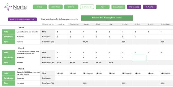 Planilha de Planejamento de Captação de Recursos para ONGS em Excel - Aba Estruturar