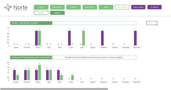Planilha de Planejamento de Captação de Recursos para ONGS em Excel - Aba Resultados 1